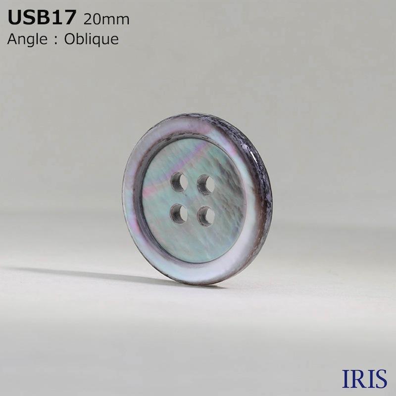 USB17 黒蝶貝 表穴4つ穴ボタン  7サイズ1色展開