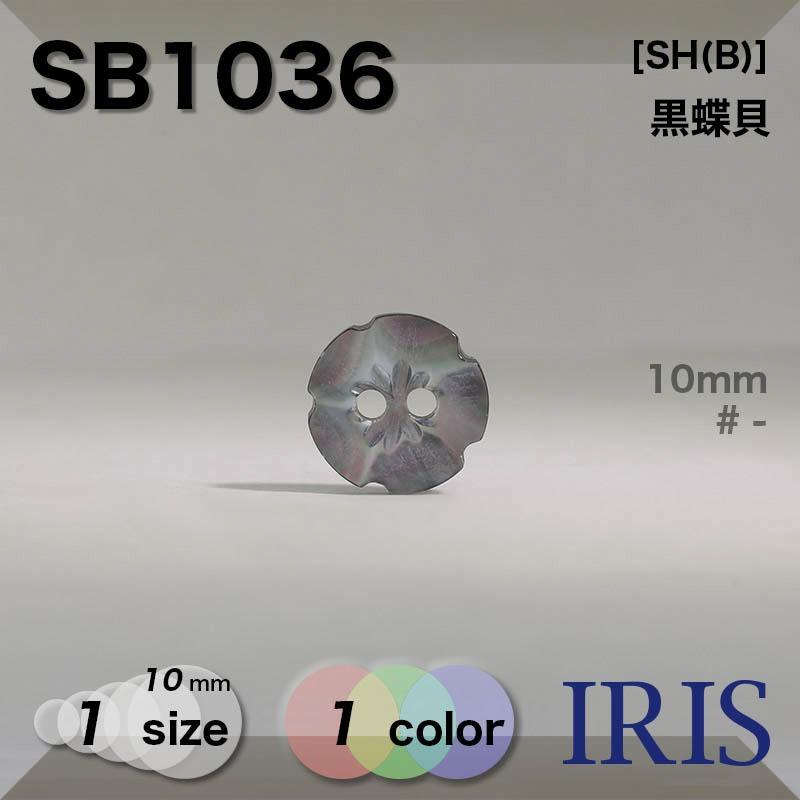 SB1036 黒蝶貝 表穴2つ穴ボタン  1サイズ1色展開