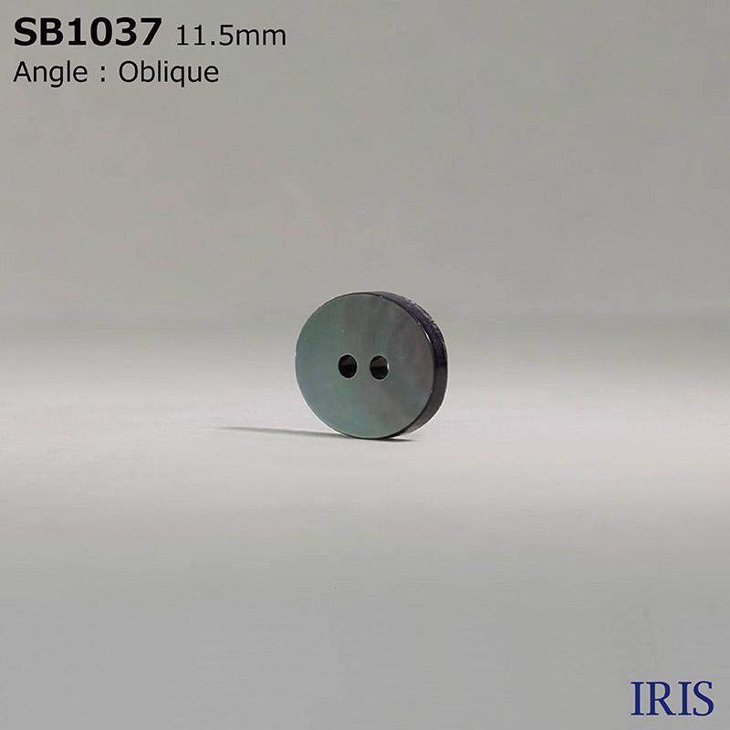 SB1037 黒蝶貝 表穴2つ穴ボタン  1サイズ1色展開