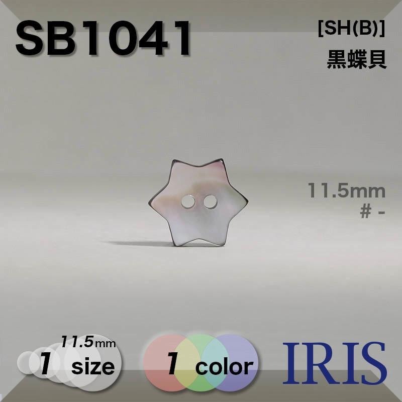 SB1041 黒蝶貝 表穴2つ穴ボタン  1サイズ1色展開