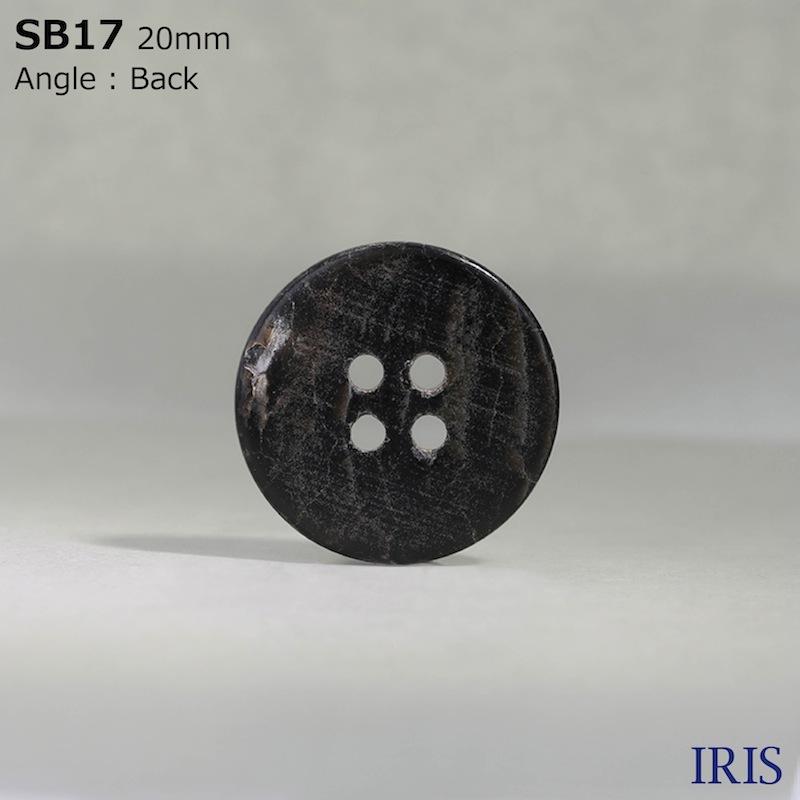 SB17 黒蝶貝 表穴4つ穴ボタン  11サイズ1色展開