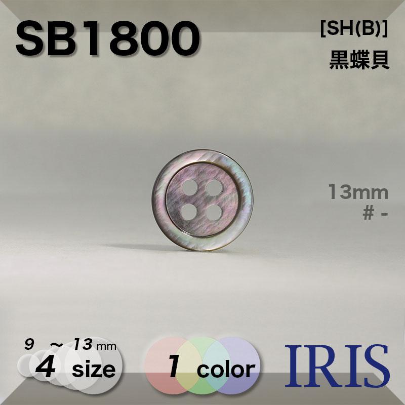 SB1800 黒蝶貝 表穴4つ穴ボタン  4サイズ1色展開