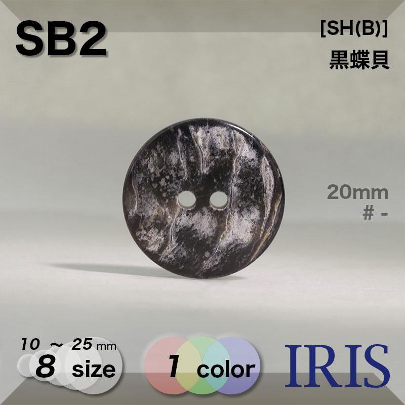 SB2 黒蝶貝 表穴2つ穴ボタン  8サイズ1色展開