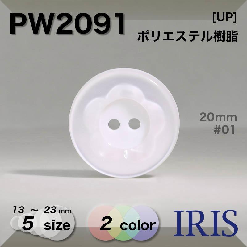 PW2091 ポリエステル樹脂 表穴2つ穴ボタン  5サイズ2色展開