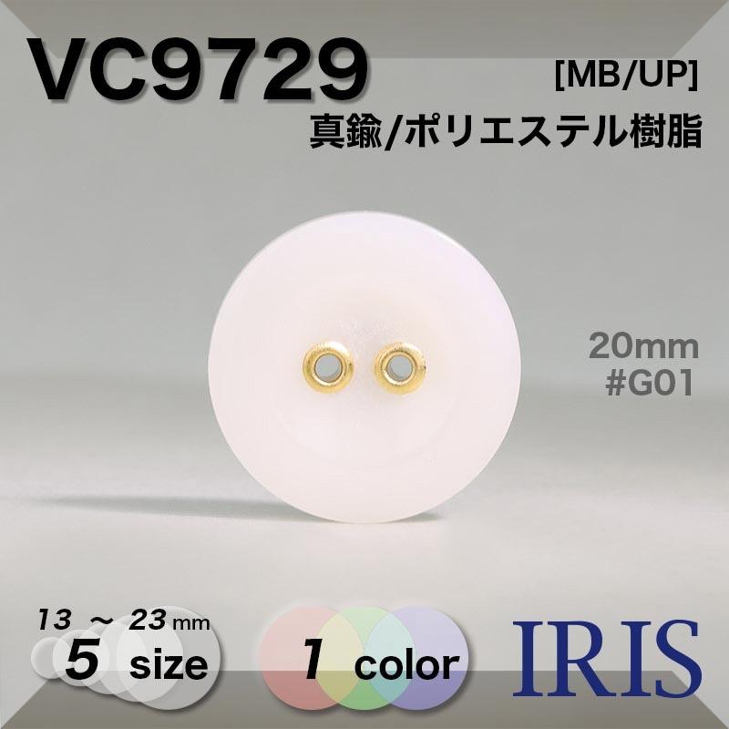 VC9729 真鍮/ポリエステル樹脂 表穴2つ穴ボタン  5サイズ1色展開
