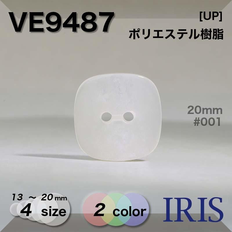 VE9487 ポリエステル樹脂 表穴2つ穴ボタン  4サイズ2色展開