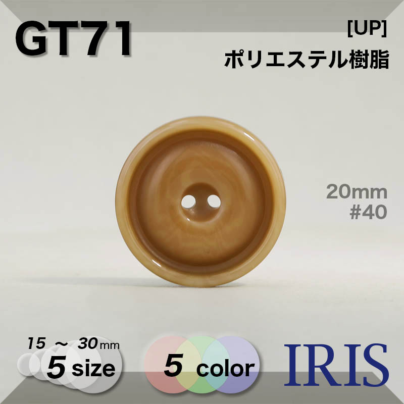 GT71 ポリエステル樹脂 表穴2つ穴ボタン  5サイズ5色展開
