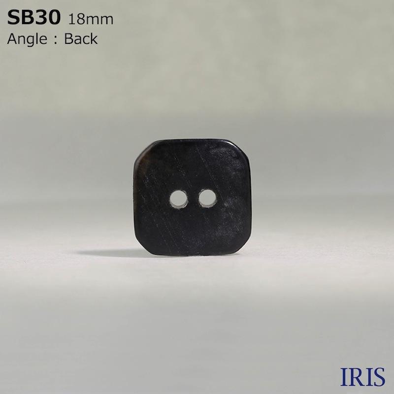 SB30 黒蝶貝 表穴2つ穴ボタン  2サイズ1色展開