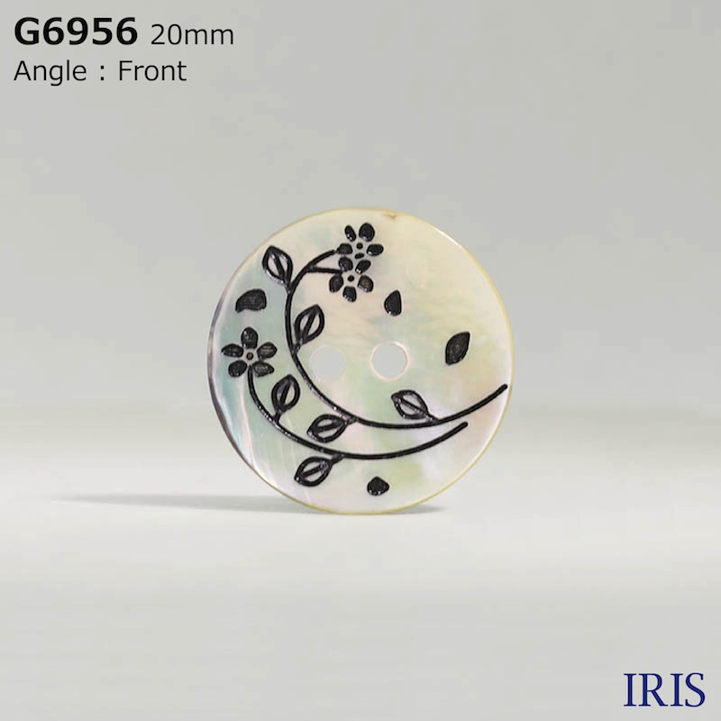 G6956 貝全般 表穴2つ穴ボタン  6サイズ1色展開