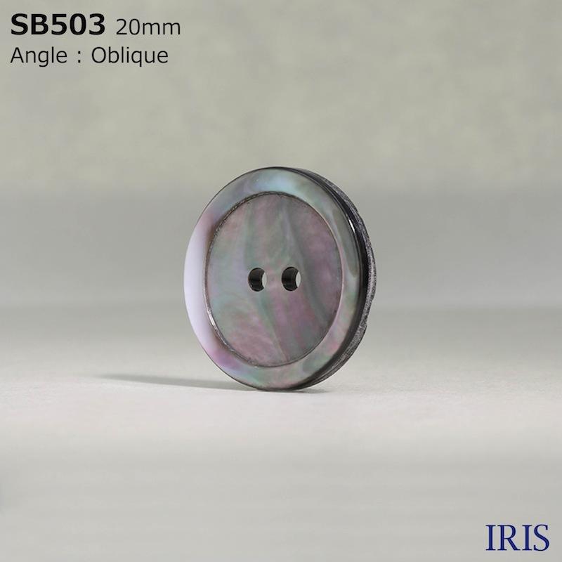 SB503 黒蝶貝 表穴2つ穴ボタン  6サイズ1色展開