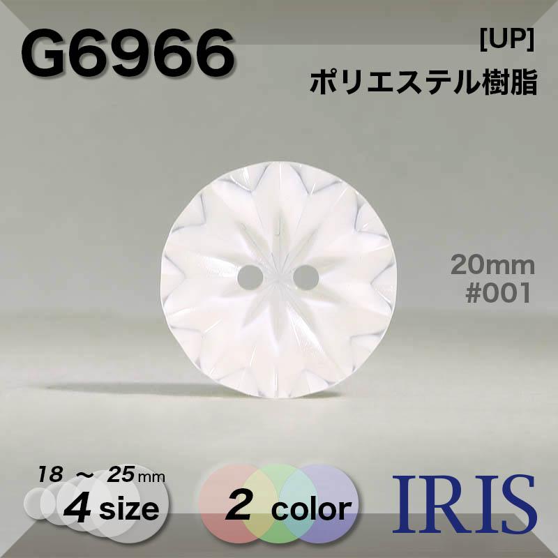 G6966 ポリエステル樹脂 表穴2つ穴ボタン  4サイズ2色展開