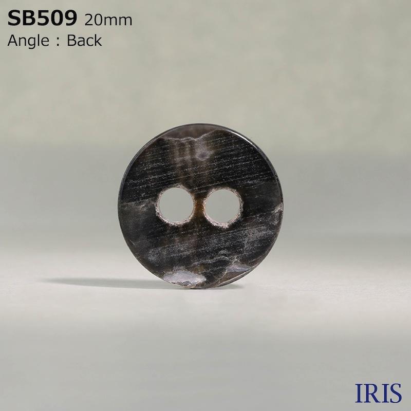 SB509 黒蝶貝 表穴2つ穴ボタン  5サイズ1色展開