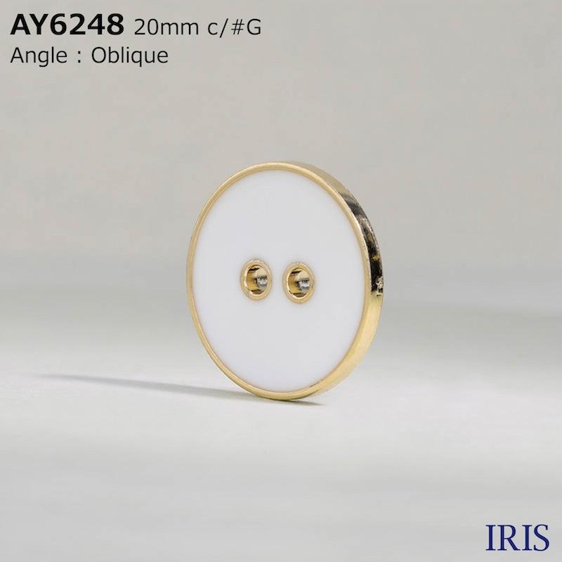AY6248 エポキシ樹脂/ABS樹脂 表穴2つ穴ボタン  7サイズ3色展開