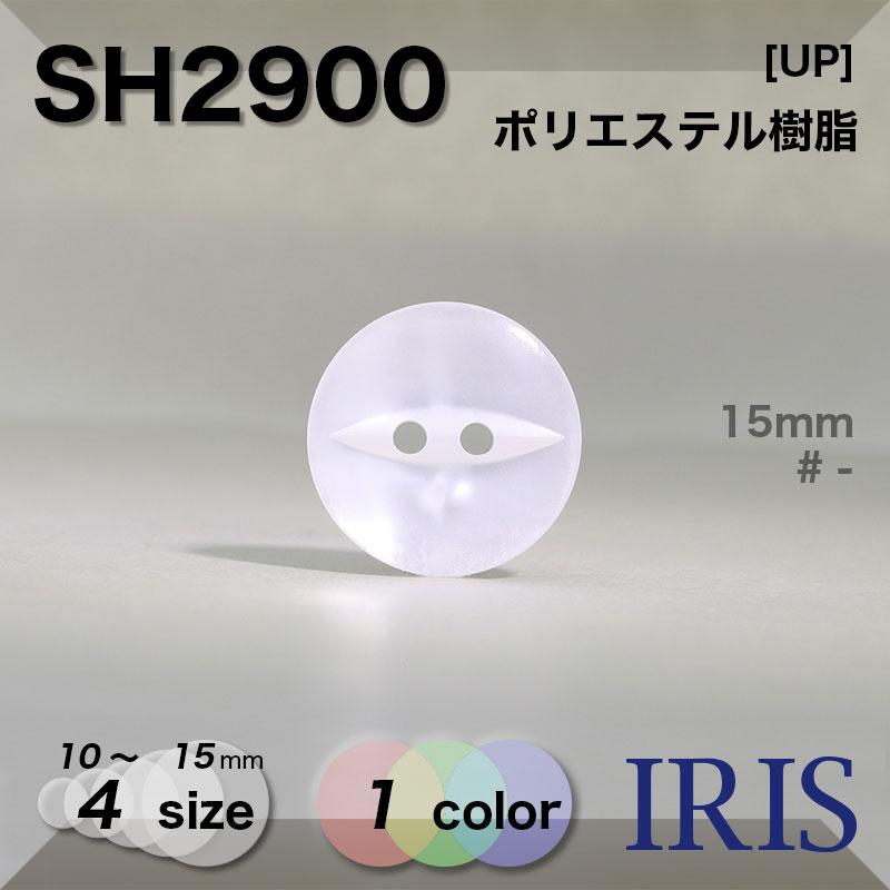 SH2900 ポリエステル樹脂 表穴2つ穴ボタン  4サイズ1色展開