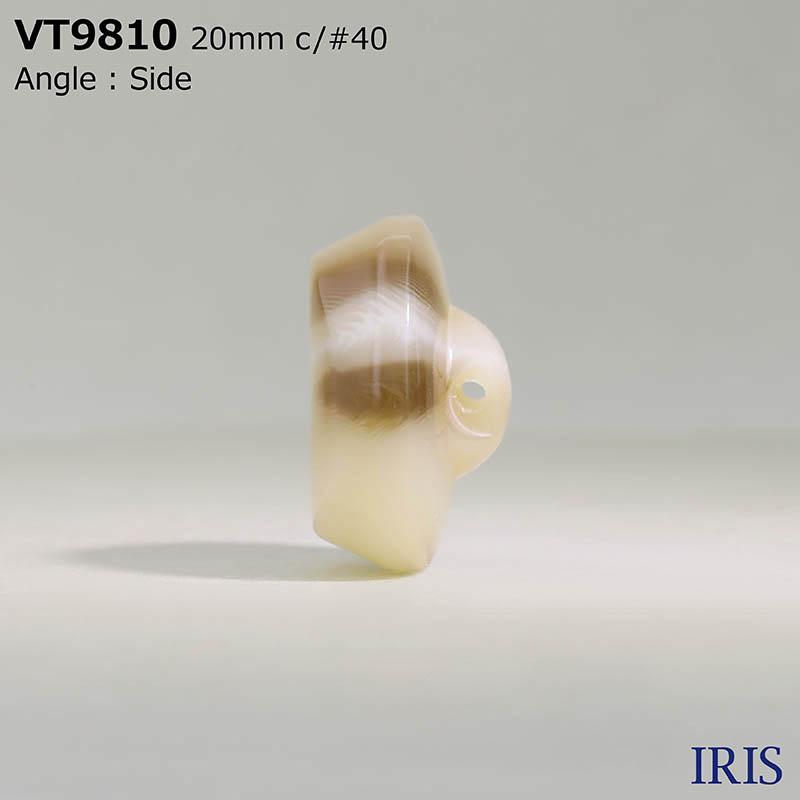 VT9810 ポリエステル樹脂 トンネル足ボタン  4サイズ6色展開