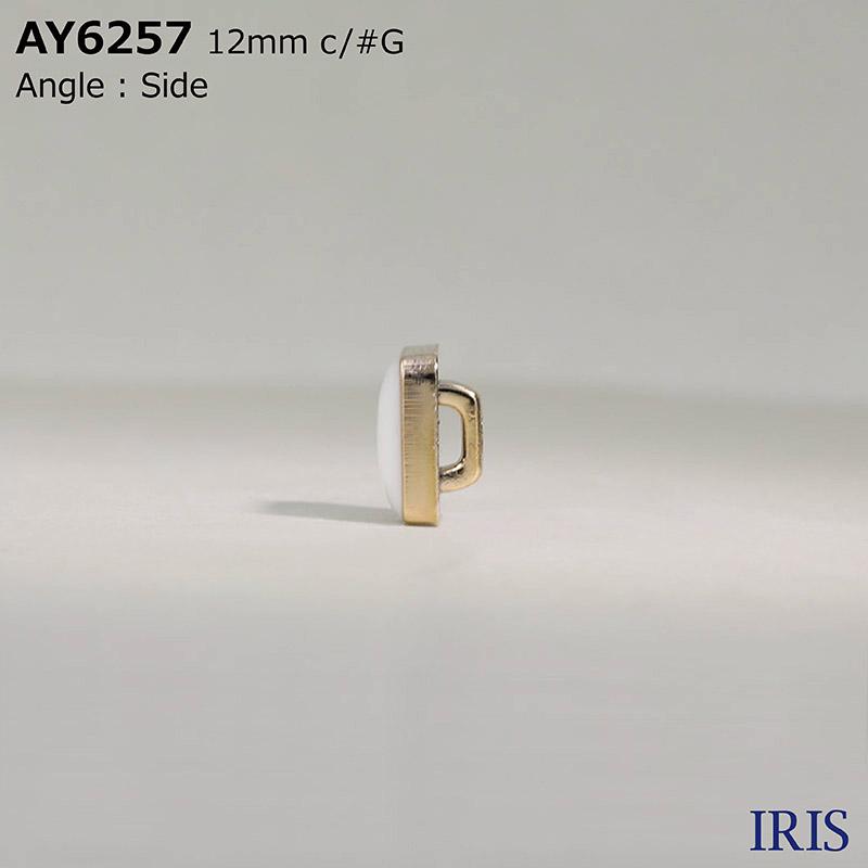 AY6257 エポキシ樹脂/ABS樹脂 角足ボタン  1サイズ3色展開