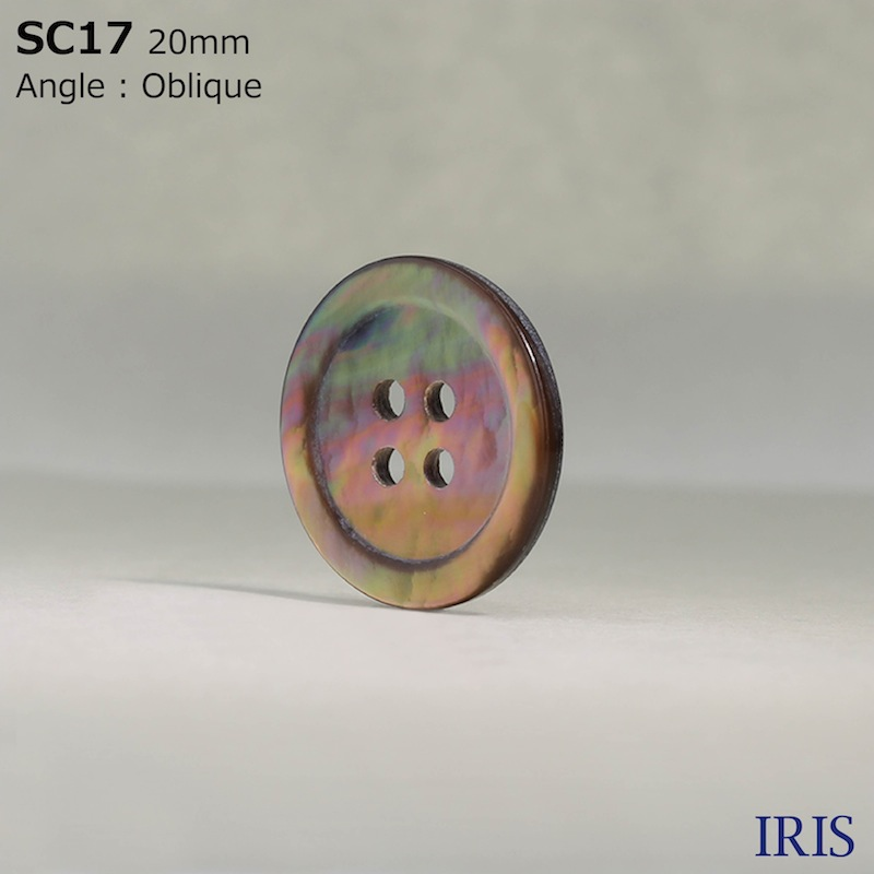 SC17 貝全般 表穴4つ穴ボタン  9サイズ1色展開
