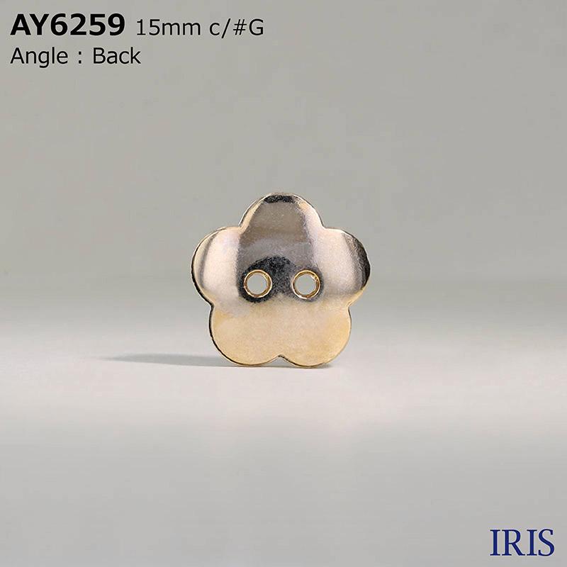 AY6259 エポキシ樹脂/ABS樹脂 表穴2つ穴ボタン  2サイズ4色展開