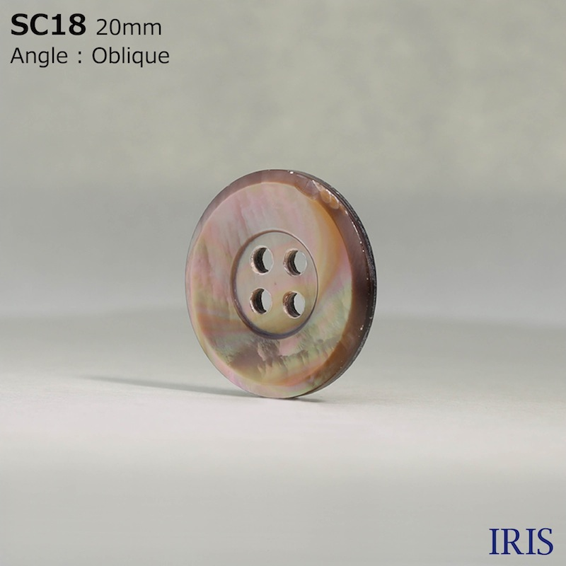 SC18 貝全般 表穴4つ穴ボタン  6サイズ1色展開