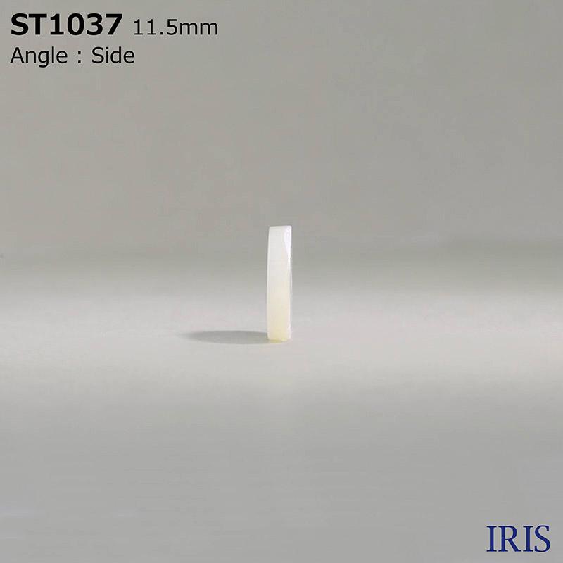 ST1037 高瀬貝 表穴2つ穴ボタン  1サイズ1色展開