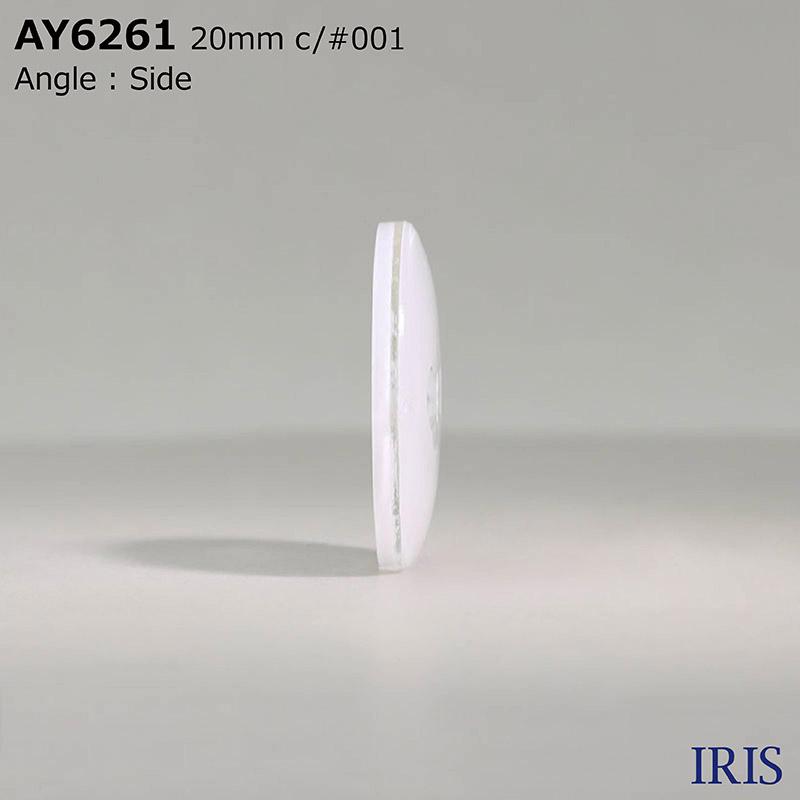 AY6261 ナイロン樹脂/エポキシ樹脂 表穴2つ穴ボタン  6サイズ1色展開