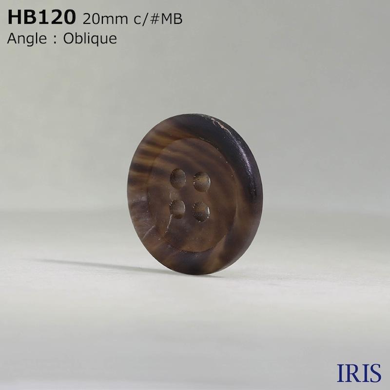 HB120 本水牛 表穴4つ穴ボタン  5サイズ6色展開