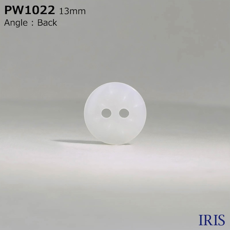 PW1022 ポリエステル樹脂 表穴2つ穴ボタン  3サイズ1色展開