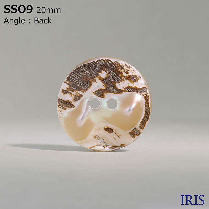 SSO9 貝全般 表穴2つ穴ボタン  7サイズ1色展開