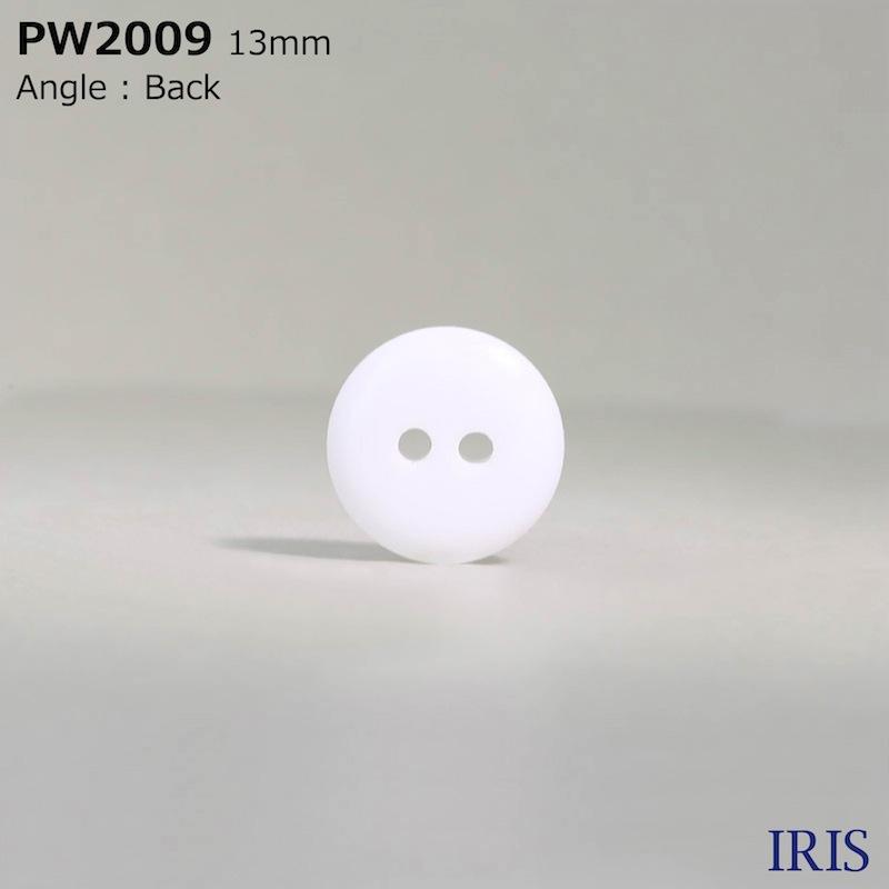 PW2009 ポリエステル樹脂 表穴2つ穴ボタン  3サイズ1色展開