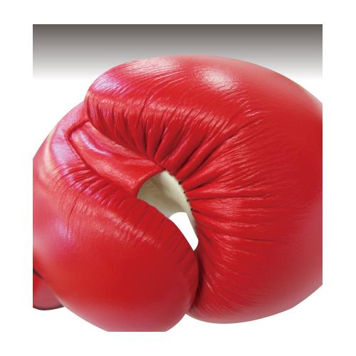 BOXERボクシンググローブ 8オンス