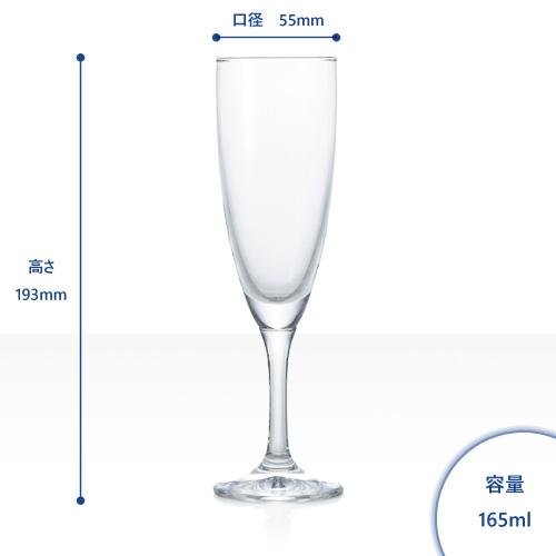 シャンパングラス/フラネシャンパン 6個入/容量165ml