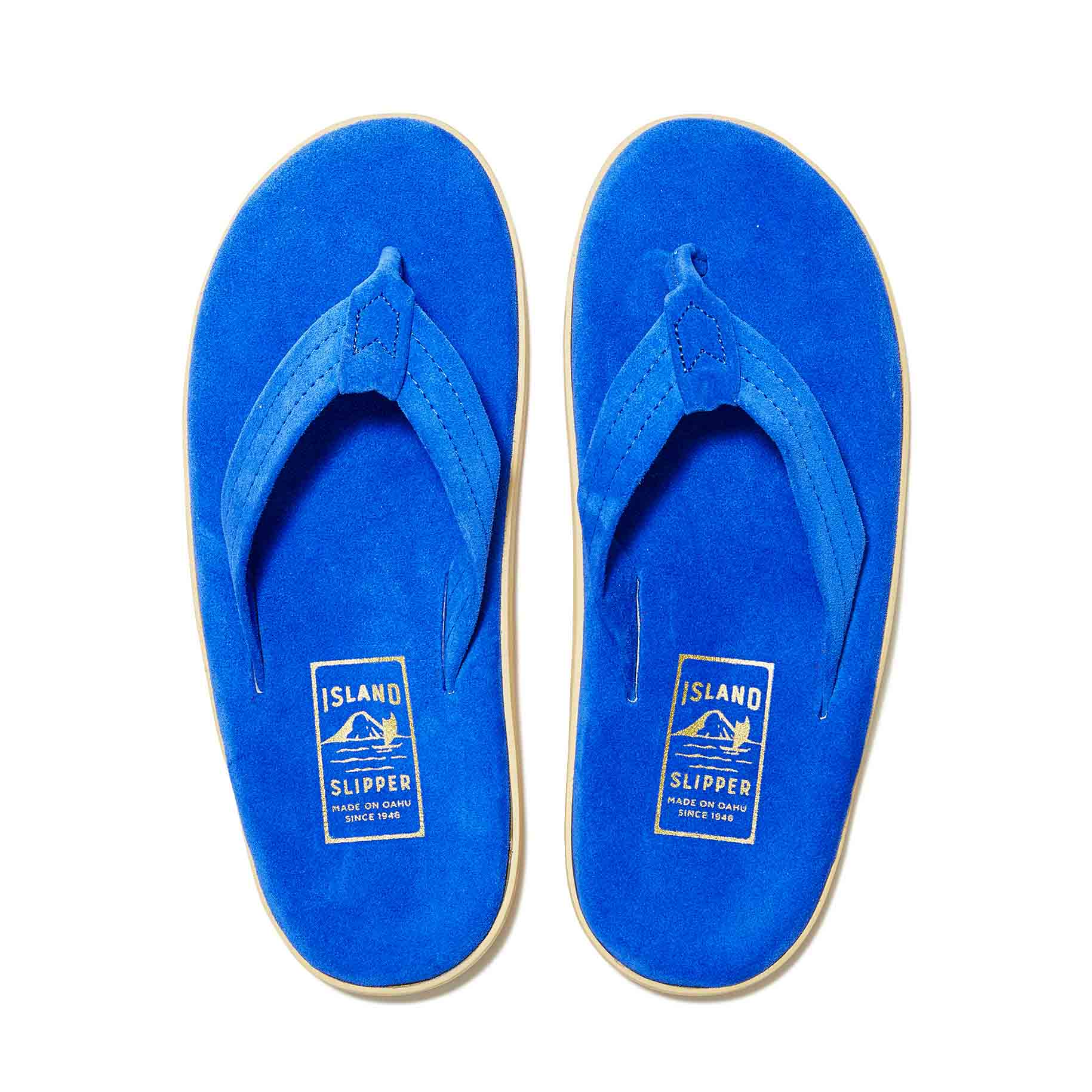 PT203 /  ELECTRIC BLUE