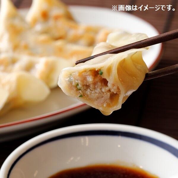 五郎餃子(にんにくなし45個)