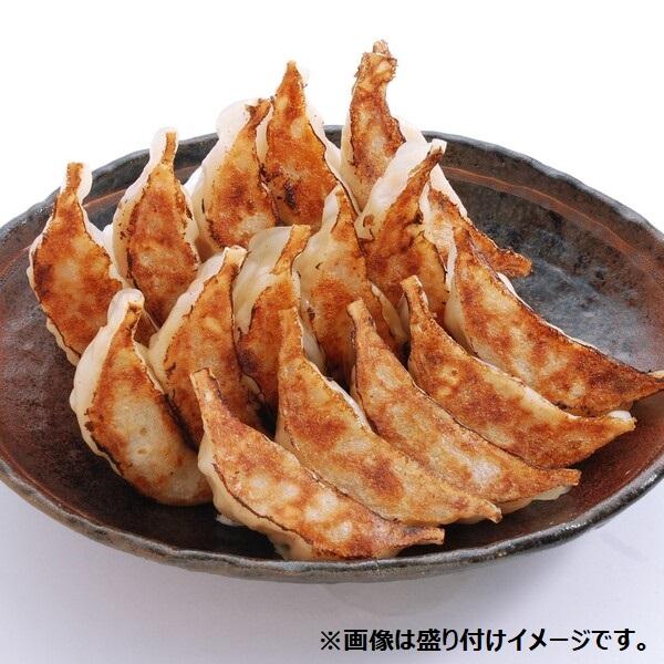 野菜餃子(にんにくなし45個)