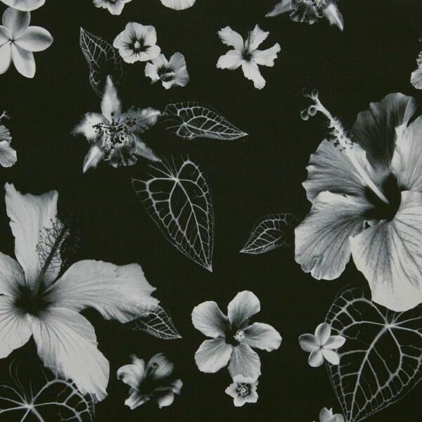 Honolulu Noir (3498-01)