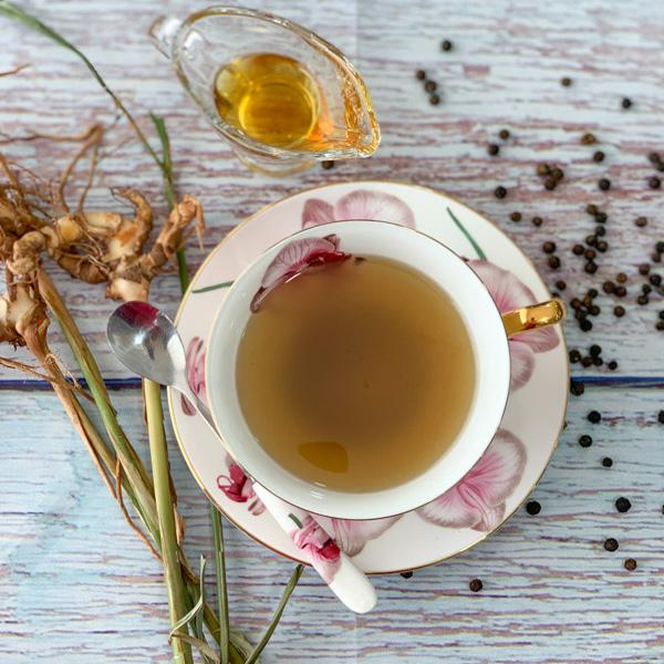 「アルピニア・ガランガ(カー・タイジンジャー)の苗木 12cmポット大苗 1個売り」タイ料理によく利用されるショウガの仲間で、カレーのほか多くの料理の香りづけに使われる。塊茎はショウガよりも一回り大きくなり、かたい皮はなく白っぽい色でさわやかな甘い香りが特徴。