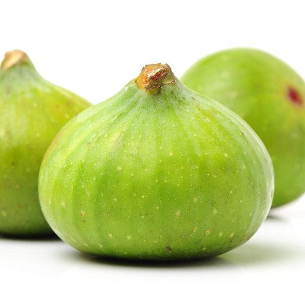 ミニイチジク ロイヤルビンヤード【果樹苗9cmポット/2個セット】夏秋果兼用種。小さめの実で皮付きのままツルっと食べれる、味も香りも良い品種!!完熟すると果皮はブラウンになり、果肉はイチゴ色。1874年にイギリスのナーセリーで発見記録されたという由緒ある品種。