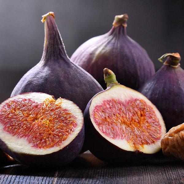 ミニイチジク ブリジャソットグリース【果樹苗9cmポット/2個セット】夏秋果兼用種の無花果。小さめの実で皮付きのままツルっと食べれる、味も香りも良い品種!!日持ちが良く酸味が強いので生食はもちろん、ジャム等の加工品種として人気!!食物繊維が豊富で栄養価も高い品種。