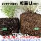 【送料無料】ニオイタコノキ 10.5cm 4個セット【おうちで簡単!育てやすい10.5cmポットハーブ苗シリーズ!】根張り・大きさ・選別が良いので、育てやすい!生育簡単で初心者にもオススメのハーブシリーズです!ガーデニングや家庭菜園に!