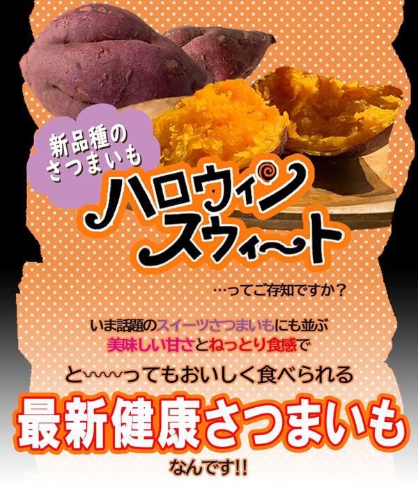 【送料無料】訳有り ハロウィンスイート Sサイズ 5kg【岡山県産 希少 さつまいも 2020 秋 新芋 土付き お買い得】はろうぃんすいーと 健康 焼き芋 やきいも 焼芋 サツマイモ さつま芋 薩摩芋 取り寄せ 通販 わけあり ワケあり 訳あり