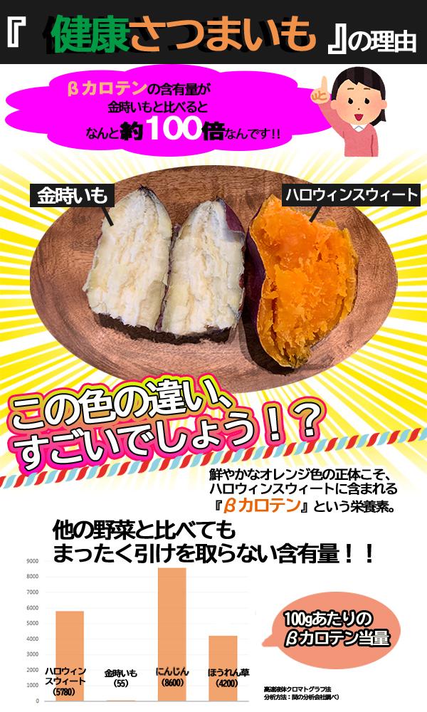 【予約販売・10月下旬出荷予定】ハロウィンスイート 5kg【特Aクラス 希少 さつまいも 2020 秋 新芋 土付き お買い得】はろうぃんすいーと 健康 焼き芋 やきいも 焼芋 サツマイモ さつま芋 薩摩芋 熟成 特選 取り寄せ 通販 プレゼント ギフト 贈答
