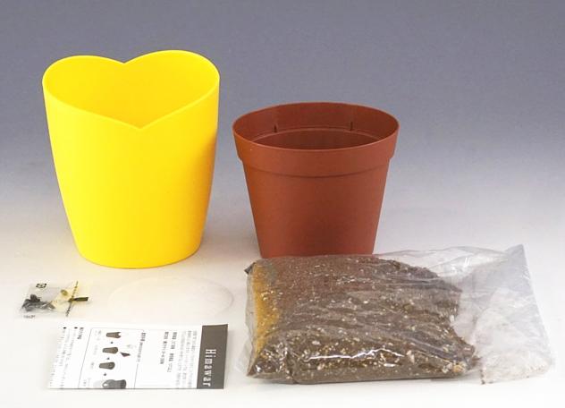 ミニヒマワリ栽培セット【送料無料】【背が高くならずお部屋に飾るのにちょうどいいミニサイズ】