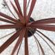 【送料無料】コルディリネ・レッドスター カラーリーフ 観葉植物【観葉植物  4号ポット苗  /1個売り】観葉植物 リビング オフィス 事務所 インテリア 大型 おしゃれ オシャレ 育てやすい お祝い 新築祝い プレゼント green 植物のある暮らし