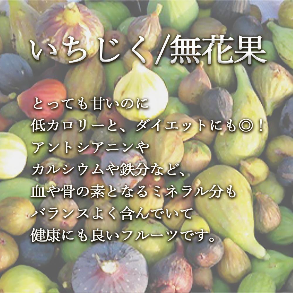 ミニイチジク イスキア【ミニ果樹苗9cmポット/2個セット即納】【送料無料】