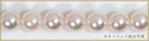 あこや真珠パールネックレス<7.5〜8mm>N-12200