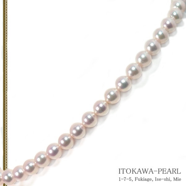 あこや真珠パールネックレス<7.5〜8mm>N-12202