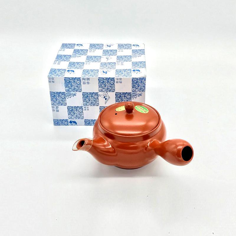 特選深蒸し茶 100g 大きめ常滑急須550ml 1つ 【ネット限定特別商品!】 セット スタートセット