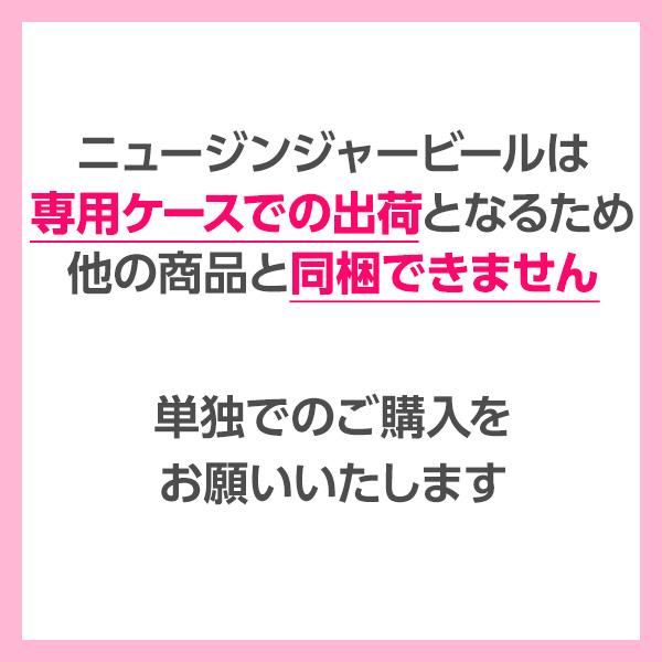 【4本セット】ニュージンジャービール