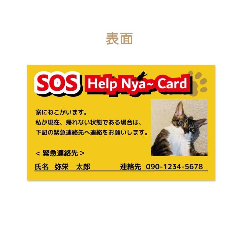 万が一の災害時にうちの猫を助ける!Help Nya〜 card 5枚