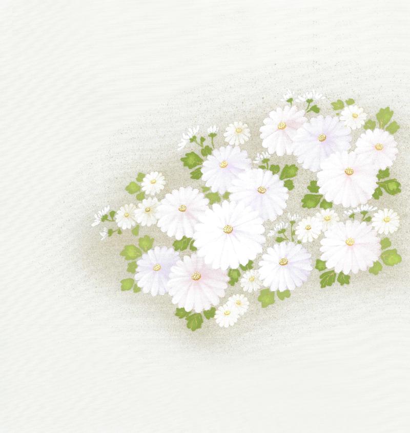 新塩瀬帯 秋の柄「菊に小花」 グレー地